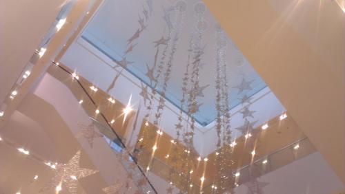 johnlewis atrium ecorig